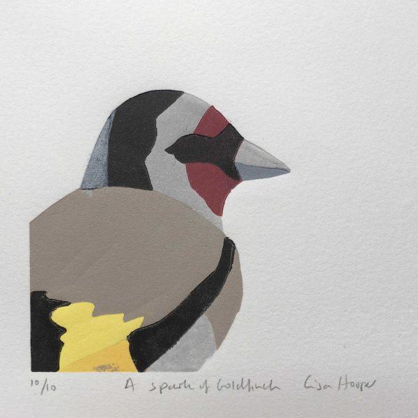 Hooper Goldfinch