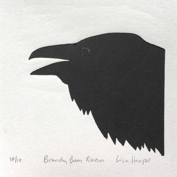 Hooper Raven