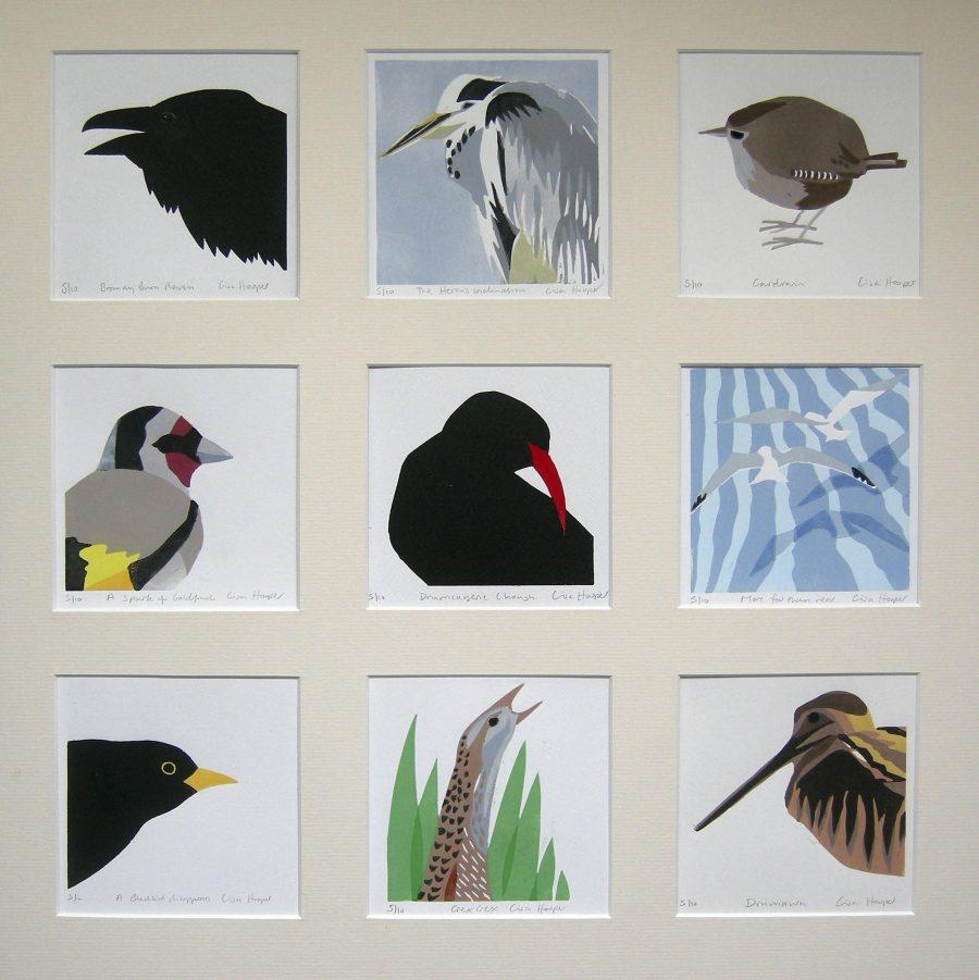 Hooper Kens Birds Composite